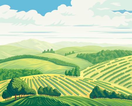 Paesaggio rurale con colline e campi, illustrazione vettoriale.