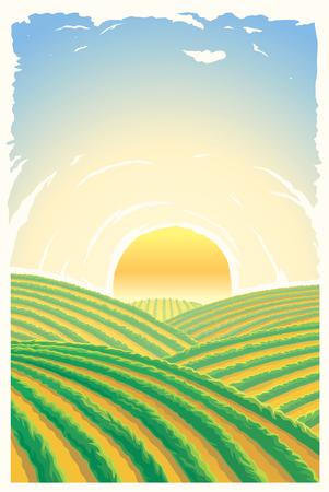 丘の上の日の出と農村景観