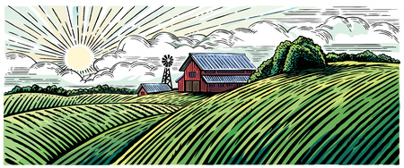 Rural landscape with a farm in engraving style and painted in color. 向量圖像