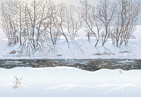 겨울 숲 풍경