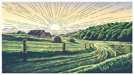 Rural landscape in engraving style, vector illustration.