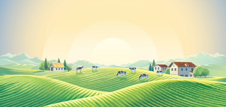 Herd of cows in the summer rural landscape at dawn among fields and pastures. Vector illustration.
