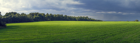 Rural panoramic landscape with sun-lit field, before a thunder-storm.