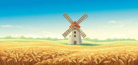 Paesaggio estivo rurale con mulino a vento e campo di grano. Illustrazione vettoriale