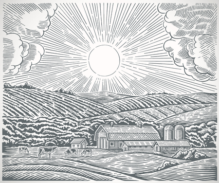 Rural landscape with a farm and with herd cows, drawn in engraving style.