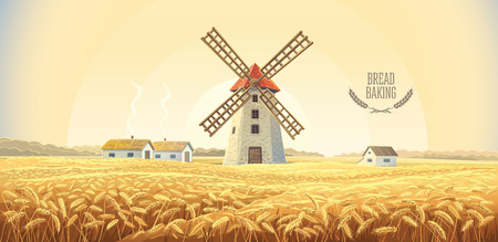 Rural autumn landscape with windmill and wheat field. Illustration