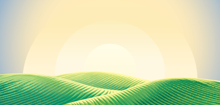 Morning rural landscape, sunrise over hills wight sown agricultural fields. Vector illustration.