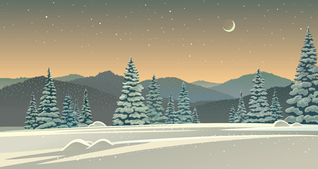 Winter night landscape with snowlight in the foreground, with moonlight.