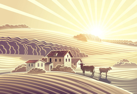 Rural landscape, with villages and cows.