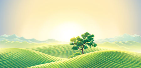 Rural dawn landscape with fields and mountains. Raster illustration.