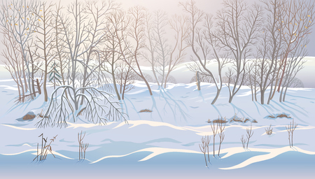 Winter landscape with forestdrifts can be used successfully as a background image. Stock Photo