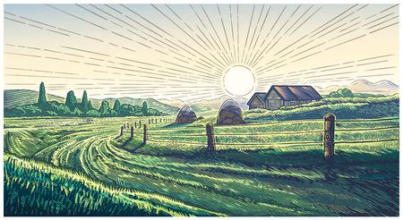Rural landscape with dawn in engraving style Ilustração