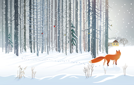 Winter forest landscape with a hungry fox