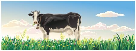 Rural summer landscape with cow. Cow in a rural meadow among flowering grasses. Ilustração