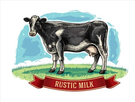 Cow drawn in a graphic style on a meadow with design elements for label. Illustration