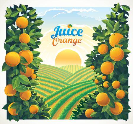 Paisaje rural con huerto y ramas con naranjas en primer plano.