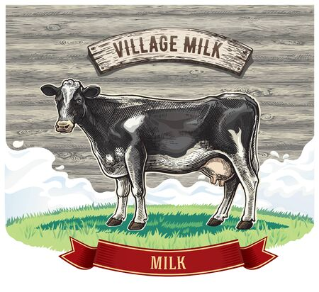Cow, drawing in a graphic style, on the background of wooden wall, with design elements for milk label.