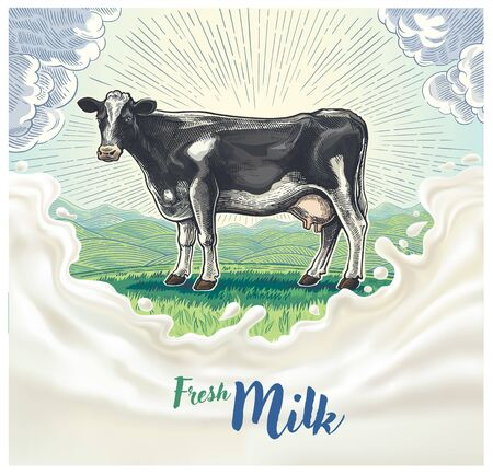 Cow, drawing in a graphic style, against the background of the morning rural landscape with hills, with design elements for milk label. Çizim