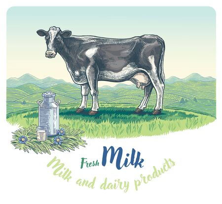 Cow, drawing in a graphic style, against the background of the rural landscape with hills, with a can and glass of milk in the foreground.