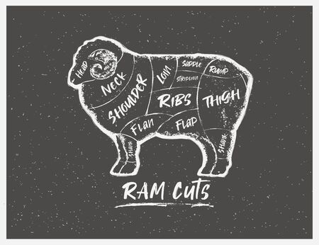 Graphic silhouette of a Ram with the line of cutting for the butcher on a dark background. Ilustracja