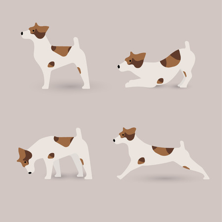 jack russell: Lovely Jack Russell terrier dog in various poses, vector illustration. Illustration