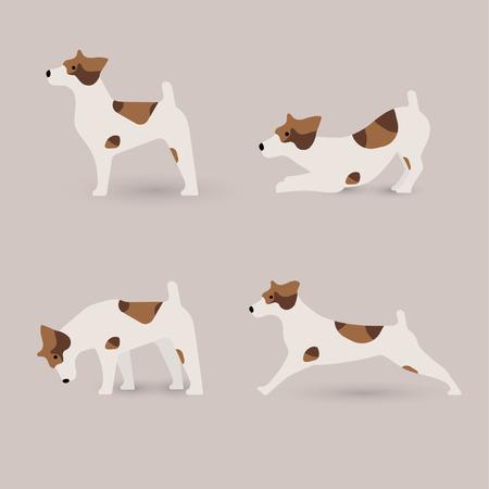 jack russell terrier: Lovely Jack Russell terrier dog in various poses, vector illustration. Illustration