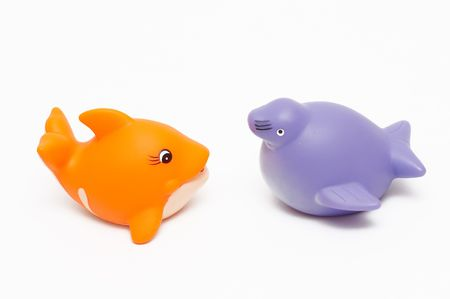 squeaky clean: fish and seal toys