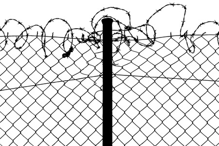 wired fence with barbed wires Vector