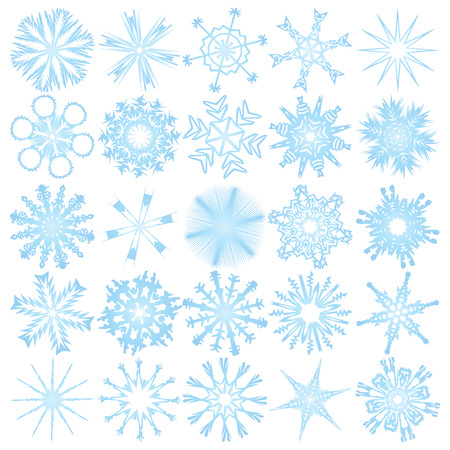 set of 25 snowflakes Vector