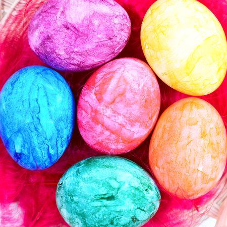 easter eggs in nest photo