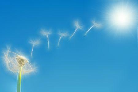 illustration of dandelion flying seeds Stock Illustration - 4835963