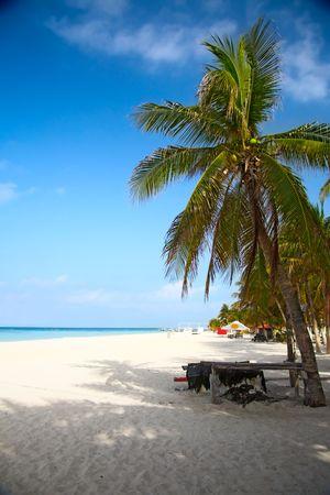 beach on the Isla Mujeres, Mexico photo