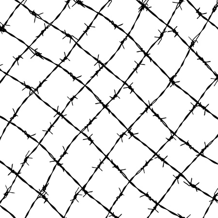 barbed wires photo