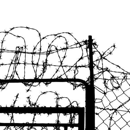 barbed wires: cerca de alambres de p�as aisladas sobre fondo blanco