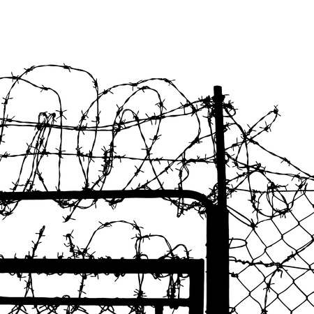 prison system: fence from barbed wires isolated on white background
