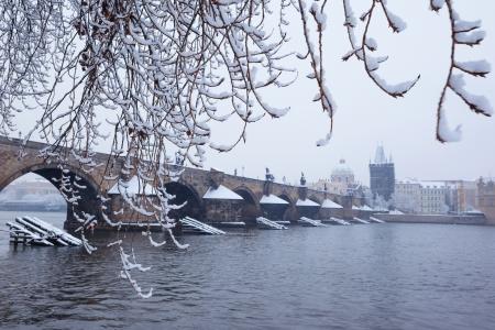 snow Charles bridge in Prague photo