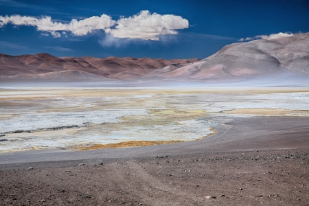 salt marsh: salt lake Salar de Pujsa, Chile
