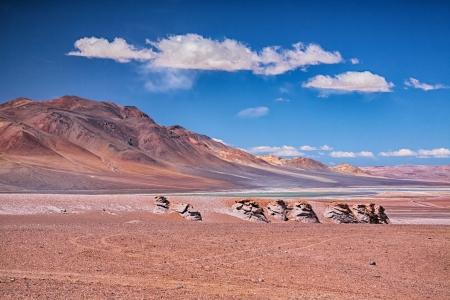 atacama: Salar Aguas Calientes, desert Atacama, Chile Stock Photo