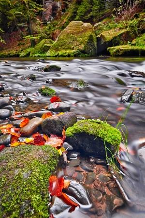 rill: river Kamenice in autumn with long exposure, Bohemian Switzerland, Czech Republic