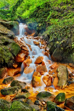 rivulet Sucha Kamenice in the national park Bohemian Switzerland, Czech Republic photo