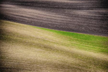 moravia: Grunge field waves background, South Moravia