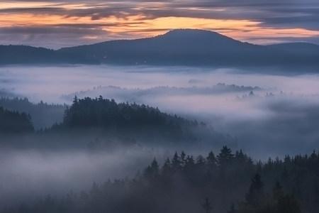 sunrise mountain: foggy dawn over the national park Bohemian Switzerland, Czech Republic