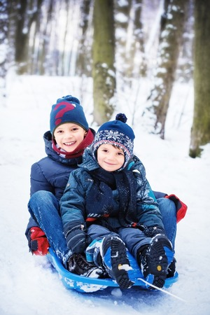 two happy brothers on sled photo