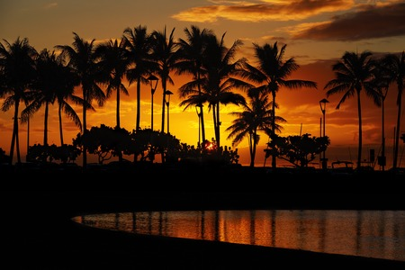 waikiki beach: sunset over palm trees and Lagoon beach from Waikiki Beach, Honolulu, Oahu, Hawaii