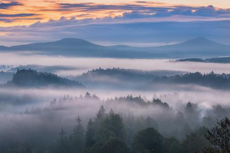 czech switzerland: foggy morning over the national park Bohemian Switzerland, Czech Republic