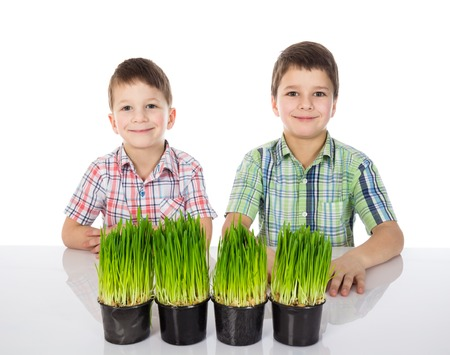 phytology: Two cute boys with fresh green grass. Stock Photo
