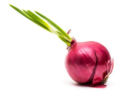 aftertaste: sprouting red onions with green arrow isolated on white background Stock Photo
