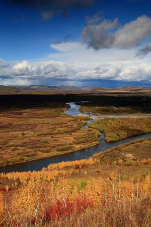 grasslands: grasslands and streams
