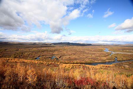 streams: grasslands and streams