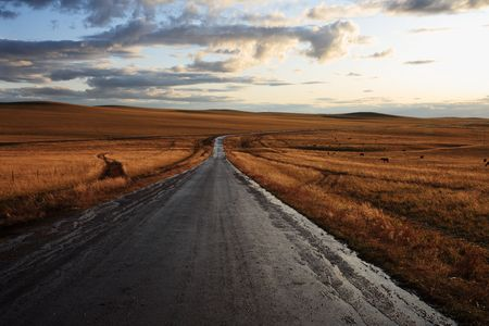 road in middle of rural area to evening Stock Photo - 6129284